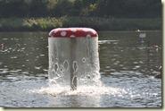 der Wasserpilz im See