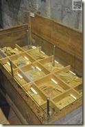 Getreidesorten im Mühlenmuseum