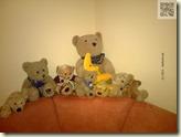 die Bären sind zurück auf dem Sofa