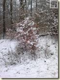 Schnee in Stuttgart