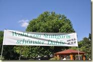 Wahl von Stuttgarts schönster Dahlie