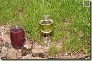 Traubensaft und Wein, lecker für groß und klein