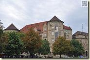 Kastanien am Alten Schloss