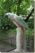 der sprechende Papagei