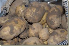 Kartoffeln, Kartoffeln, Kartoffeln