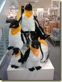 die Pinguine sind in der Stadt