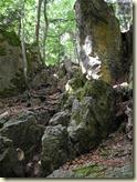 die Steine zeigen den Weg