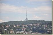 Panoramablick vom Turm