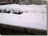 Schnee am Morgen