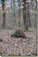 ZUDAMA-Stein-Figur im Buchwald