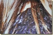 Haare und Schulter einer Unbekannten