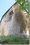 die Burgmauern